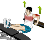 dips-chaise-banc-preparation-physique-sportive-sport-musculation-triceps-pectoraux